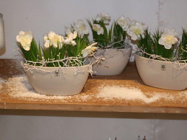 http://www.wsw-floristenbedarf.de/events/ausstellungen/