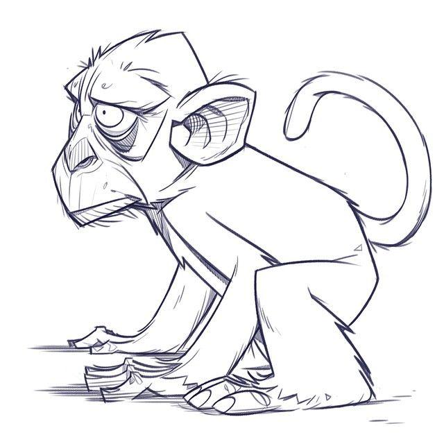 Morning monkey warm-up!