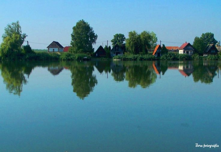 Tökéletes tükörkép, Duna parti nyaralókkal