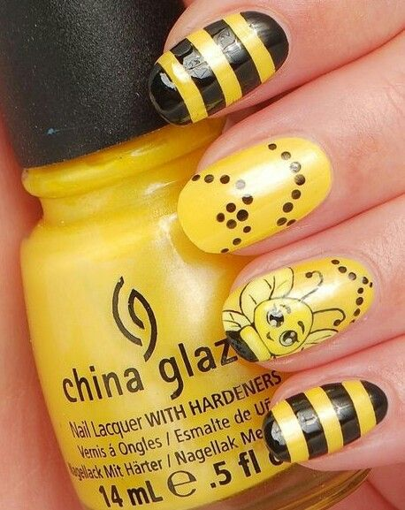 Yellow & black ,bee