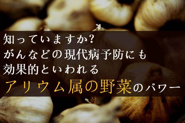 朝・晩と冷え込む日が多くなってきました。 気が付けば暑い夏が終わり、身体の冷えが気になる季節が到来。 そんな時期、強い味方になってくれるのがアリウム属の野菜なのです。 アリウム属の野菜って何? 「アリウム属」という言葉、聞きなれない人も多いのではないでしょうか。 アリウムとはユリ科アリウム(ネギ)属の植物を総称したもので、その種類は700以上とも言われています。 その中で、食用と鑑賞用に分けられます。 アリウム属に分類される代表的な野菜は、ニンニク、玉ねぎ、ニラ、ネギ、らっきょう 、エシャロットなど。 そもそも、アリウム(Allium)とは、古いラテン名でガーリック(Garlic)という意味。 「匂い」という意味のalere、haliumが語源となっているそうです。 アリウム属の野菜の特徴にはどんなものが? アリウム属に分類される野菜を見てみるとイメージしやすいと思いますが、 「独特の臭い」や「ネギ臭さ」、「辛み」が特徴です。 古来から薬用として使われてきた、薬効の高い野菜たち。 ニンニク、ニラ、らっきょう、ネギは、中国で古くから漢方薬として使用されてきた生薬。…