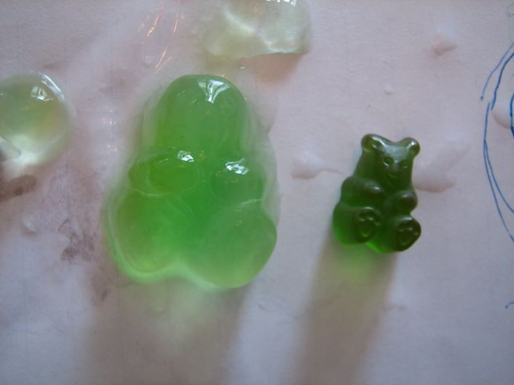 Check out the gummy bear below that  Science Matters   grew! Who knew gummies could expand so much when submerged in water?!  Experi...