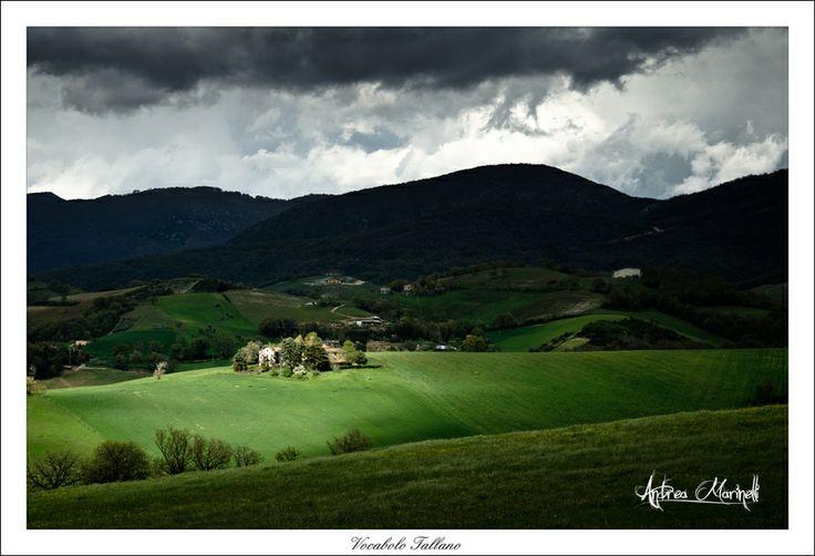 Vocabolo Tallano Marche   #TuscanyAgriturismoGiratola