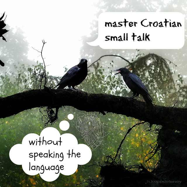 Best 25 croatian language ideas on pinterest speak language i croatian small talk zagreb honestly sciox Gallery