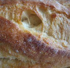 Cuban Bread in a Bread Machine