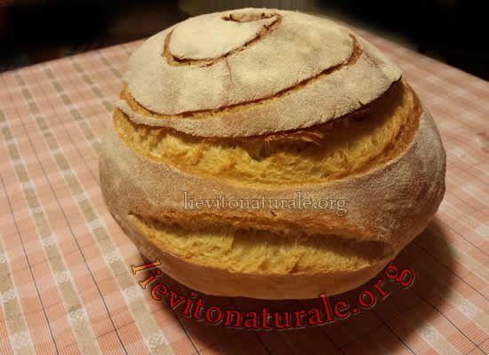 Pane con farina di Kamut e Lievito Naturale o Pasta Madre