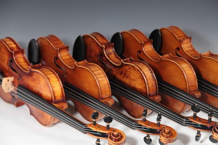 Violins Laubach