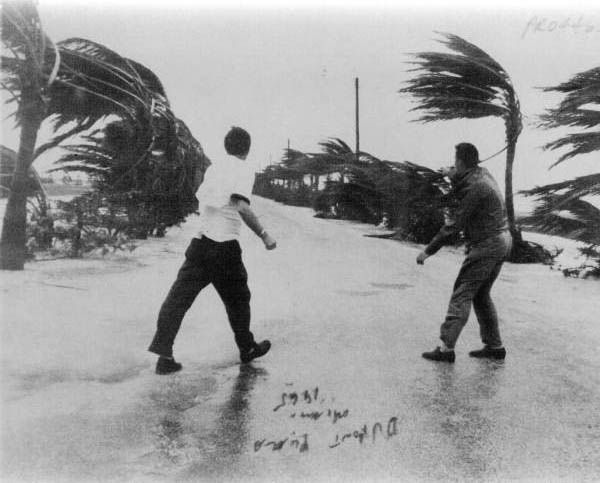 Florida Memory - View from the Dupont Plaza of men walking in Hurricane Betsy : Miami, Florida