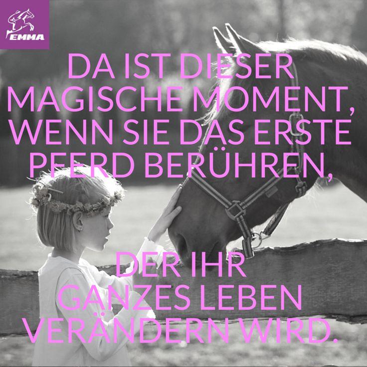 Pferdesprüche & Pferdepflege-emma-pferdefuttershop.de12