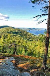 Koli National Park ,Finland:
