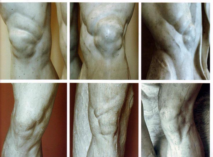 14 best leg , foot images on Pinterest   Human anatomy, Human ...