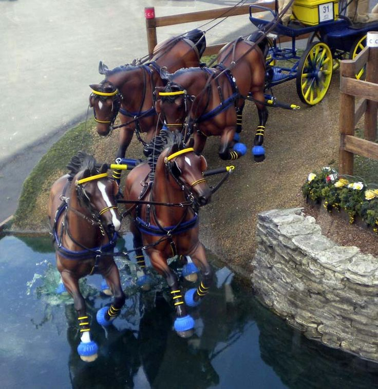 Display at KY Horse Park for World Equestrian games.