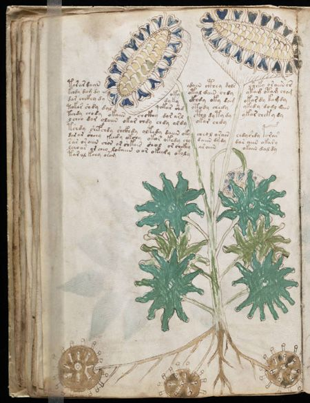 Page from the Voynich manuscript.  It is a handwritten book of 246 pages containing numerous illustrations and approximately 170,000 characters. What is special about it? The script employed is utterly unknown and therefore illegible. According to a radiocarbon analysis conducted in 2009 by the University of Arizona, the manuscript was created in the first half of the fifteenth century (probably between 1404 and 1438). Generally presumed to be some kind of ciphertext, the Voynich manuscript…