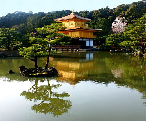 "How beautiful is this!     Kinkakuji:  ""Temple of the Golden Pavilion""     Zen Buddhist temple in Kyoto, Japan."