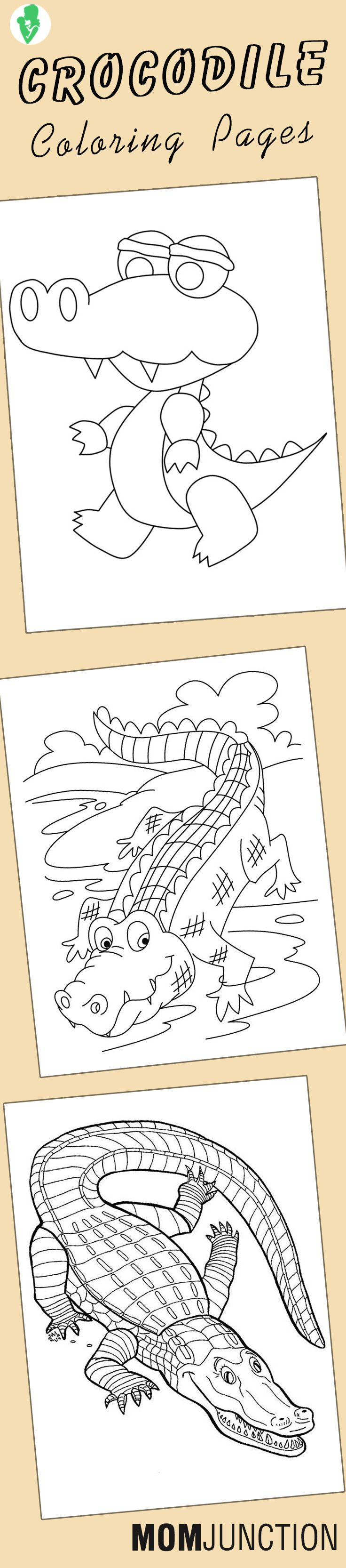 92 best coral room images on pinterest coloring sheets
