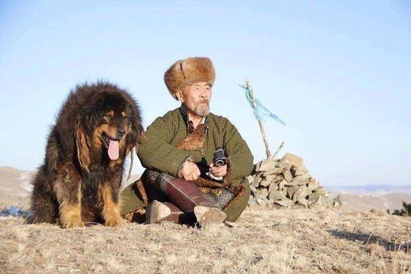 Интересные факты о Монголии-2 монголия, граница, туризм, длиннопост, путешествия, Улан-Батор, видео