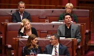 Australian Greens senators (top to bottom) Nick McKim, Janet Rice, Larissa Waters, Scott Ludlum, Sarah Hanson-Young and Robert Di Natale during question time in the Senate.