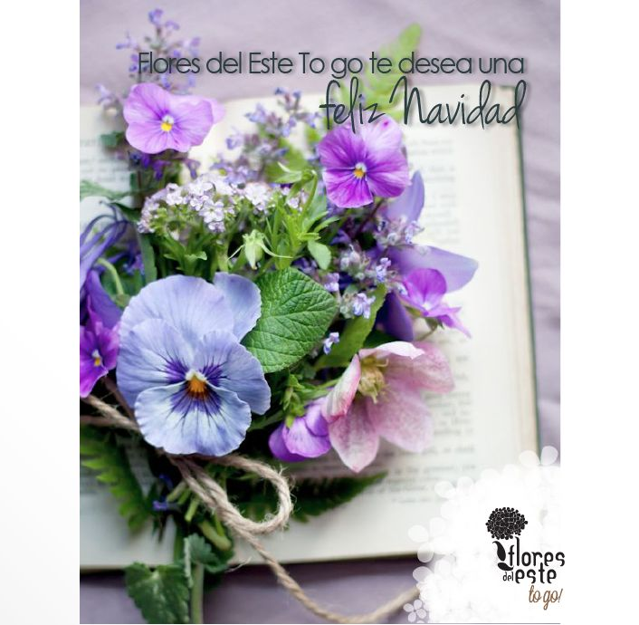 #hortensias #flores #decoración #diseño #belleza #floresdelestetogo #floresdeleste