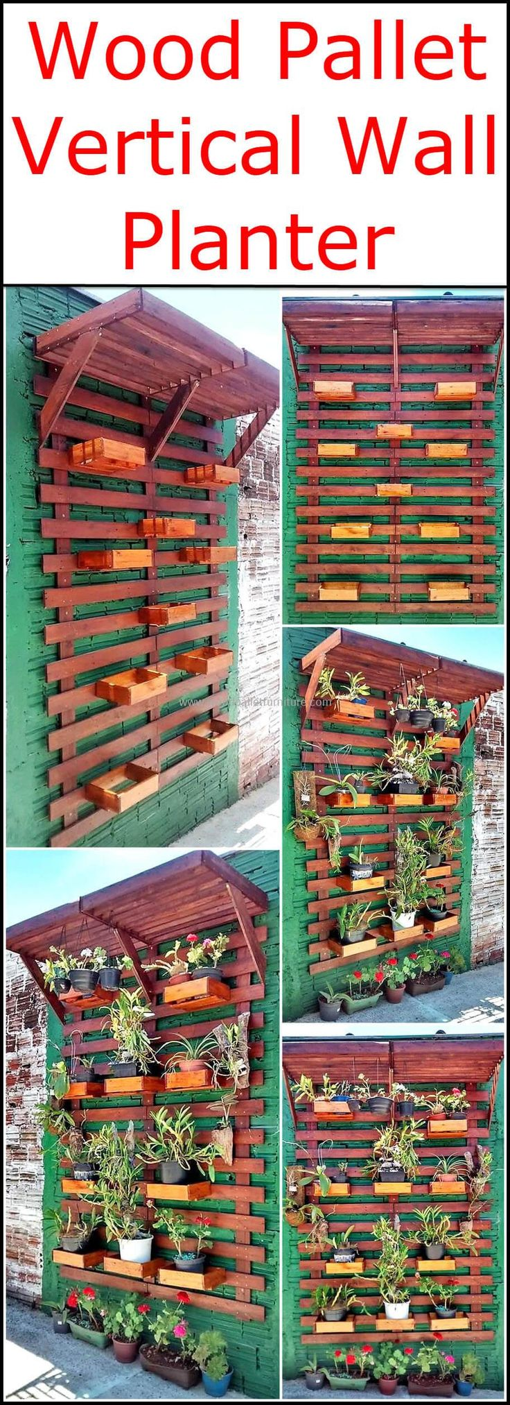 If your desires to grow different plants and flowers at your home, but worried about small planting area then use this wood pallet vertical wall planter art to fulfill your planting needs and to make your outdoor a royal place with its incredible beauty.