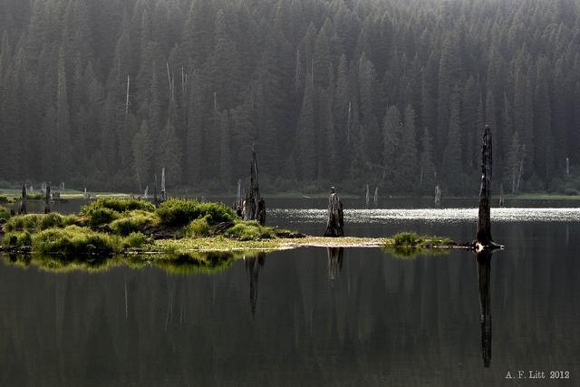 Goose Lake Wa Goose Lake Snag...