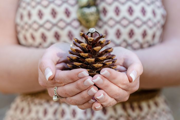 www.reneekateblog.com renee kate photography forest engagement photo pine cone