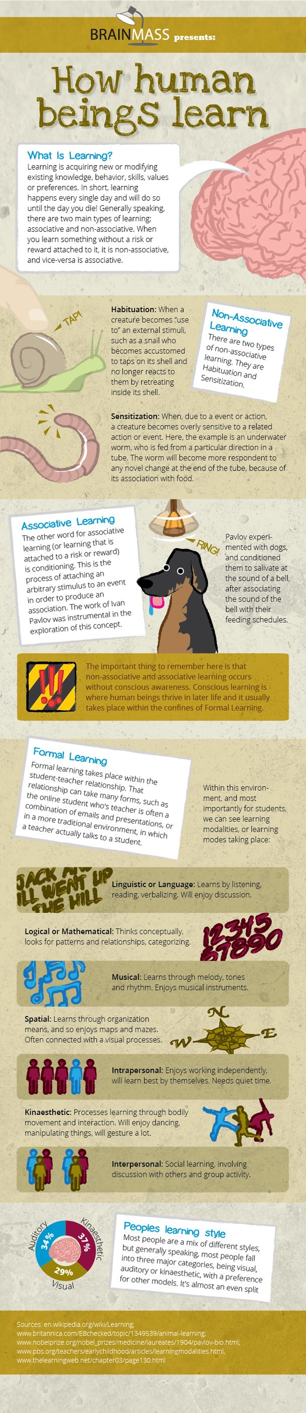 How Human Beings Learn[INFOGRAPHIC]