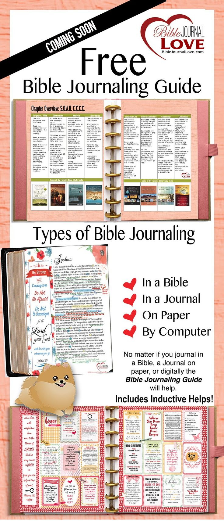 FREE Bible Journal Guide , Journal in a Bible or Planner