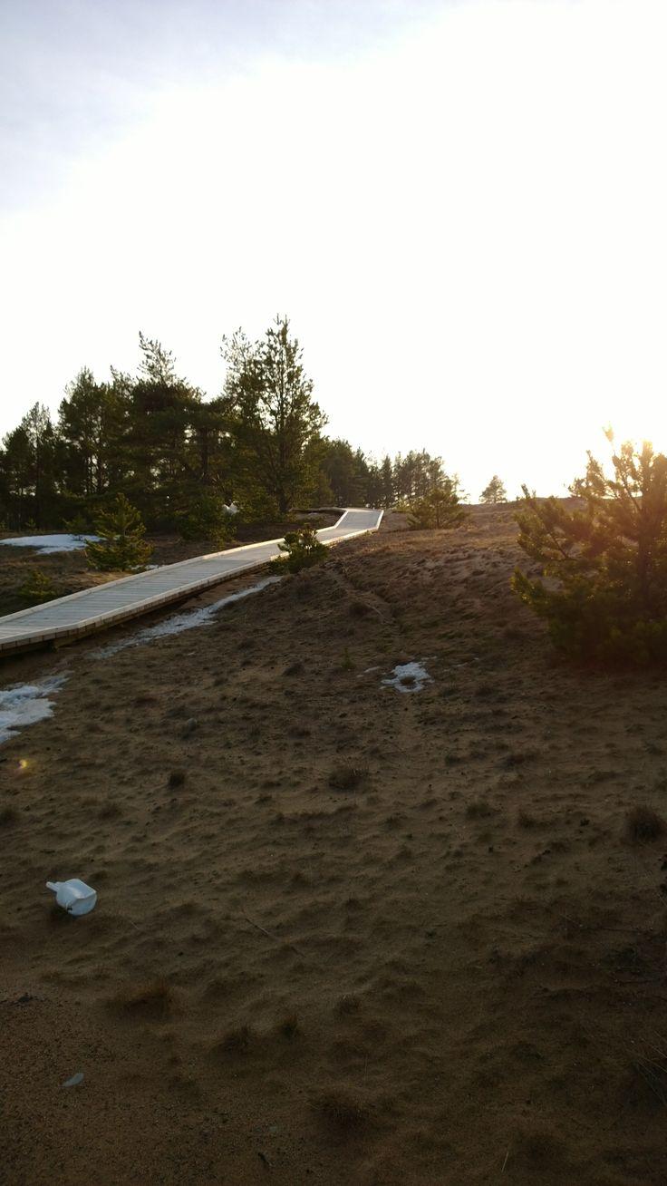 Kalajoen Loma-asuntomessualue. Kalajokiset pitkospuut.