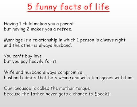 lol The Trues about Life married life