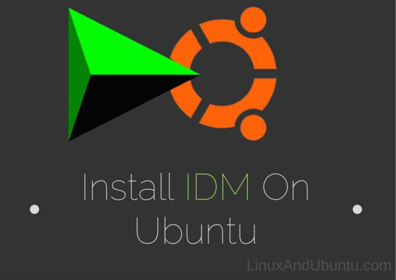 IDM For Ubuntu - Install IDM On Ubuntu And Other Linux Distributions