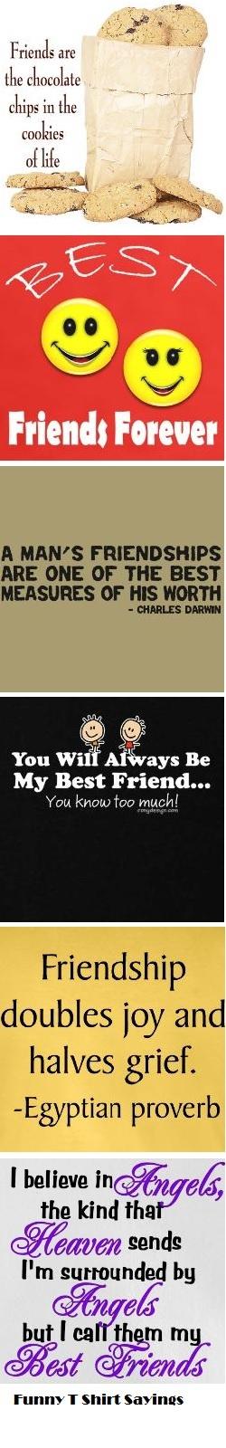 best quotes on friendship  best quotes on friendship  quotes on true friendship  best quotes on friendship  quotes on best friendship