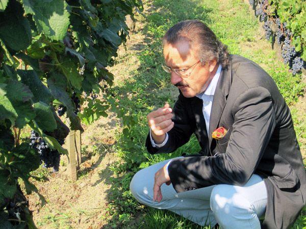 Le Comte Stephan von Neipperg sera ravi de vous accueillir pour vous faire découvrir son château et ses vignes.  Pour cela il vous suffit simplement de réserver votre visite sur Wine Tour Booking  http://bordeaux.winetourbooking.com/fr/propriete/chateau-canon-la-gaffeliere-14.html#horizontalTab1