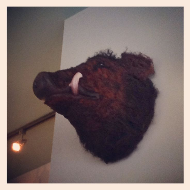 Wild Willie at The New Club, Brighton