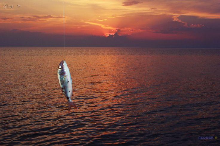 https://flic.kr/p/VYcRfn | Fishing at Sunset ... | Fishing at Sunset ... Ψαρεύοντας στο δειλινό  καθώς ο ήλιος δύει και ο ουρανός σιωπηλός απλώνει τα πορφυρά χρώματα του στην απεραντοσύνη του ορίζοντα … © George  Eyes @   Magic Sunsets at  Kassandra Chalkidiki (Halkidiki ) Greece ☀ Chalkidiki (Halkidiki ) is the most popular tourist destination in northern Greece ☀