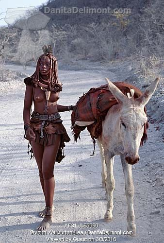 Himba woman, Angola . She drives home her donkey along dusty white tracks.