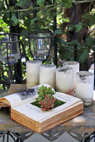 Öppna boken och skär med hjälp att riktigt vass kniv, mattkniv ut en fyrkant som blir hålrummet där man planterar. Limma ihop sidorna där du har skurit och lägg en tyngd på och låt torka. Klä sedan hålrummet med plast som du limmar fast. Plantera små växter i jord som inte är så vattenkrävande, suckulenter eller kaktusar. Täck med mossa. Sedan är det klart! - See more at: http://www.365slojd.se/projects/844-plantera-i-en-gammal-bok#sthash.l8hIGlmW.dpuf
