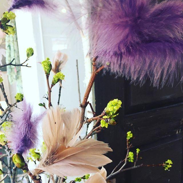Har ni köpt fjädrar hos oss? Tagga oss gärna i era bilder med @murkaminkultur som vi kan ta del av och så vi kan inspirera flera! 💜🌿 #hedemora #inredningsbutik #inredning #murkaminkultur #påsk2017 #påskvecka
