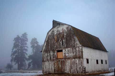 Barn & Fog, Hamilton, MT
