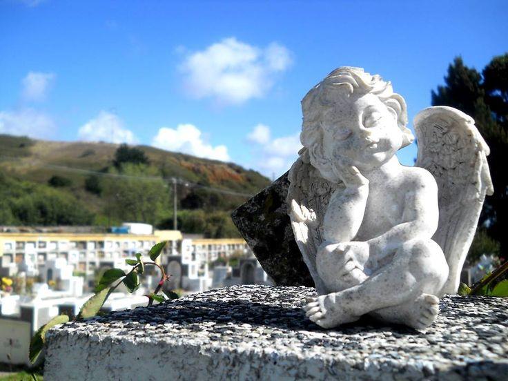 Cementerio DE Concepción angel