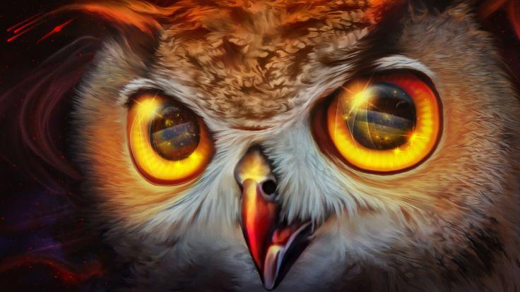 94 melhores imagens de owls no pinterest corujas coruja colorida owl red nebula nina vels on artstation at httpsartstation fandeluxe Choice Image