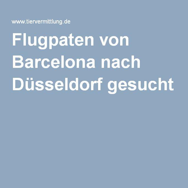 Flugpaten von Barcelona nach Düsseldorf gesucht