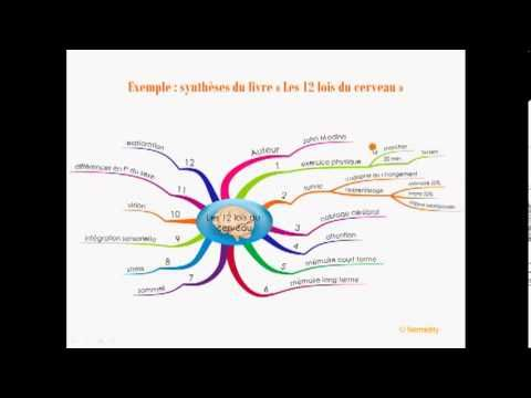 Comment synthétiser et prendre note avec le Mind Mapping - YouTube