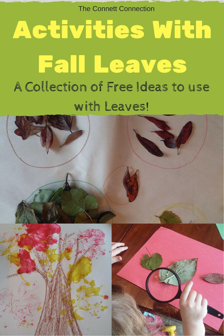 99 best Seasons: Fall images on Pinterest   Baby books, Teacher pay ...
