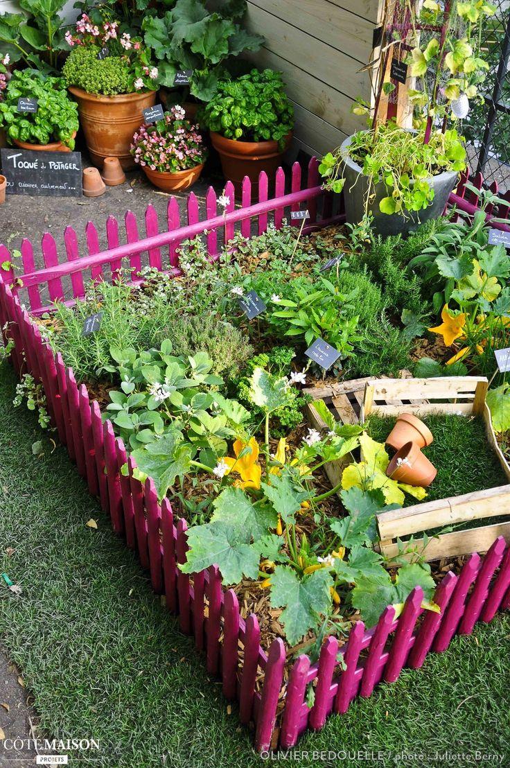 58 best jardinage et entretien du jardin images on for Plantes aromatiques
