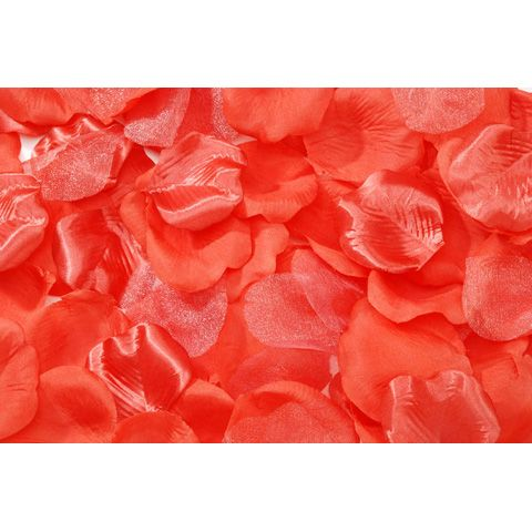 Loose Satin Rose Petals in Coral - 100 Pieces Per Bag ...