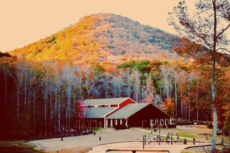 Sharptop Cove in Jasper GA. Young life Camp | jzsade | VSCO