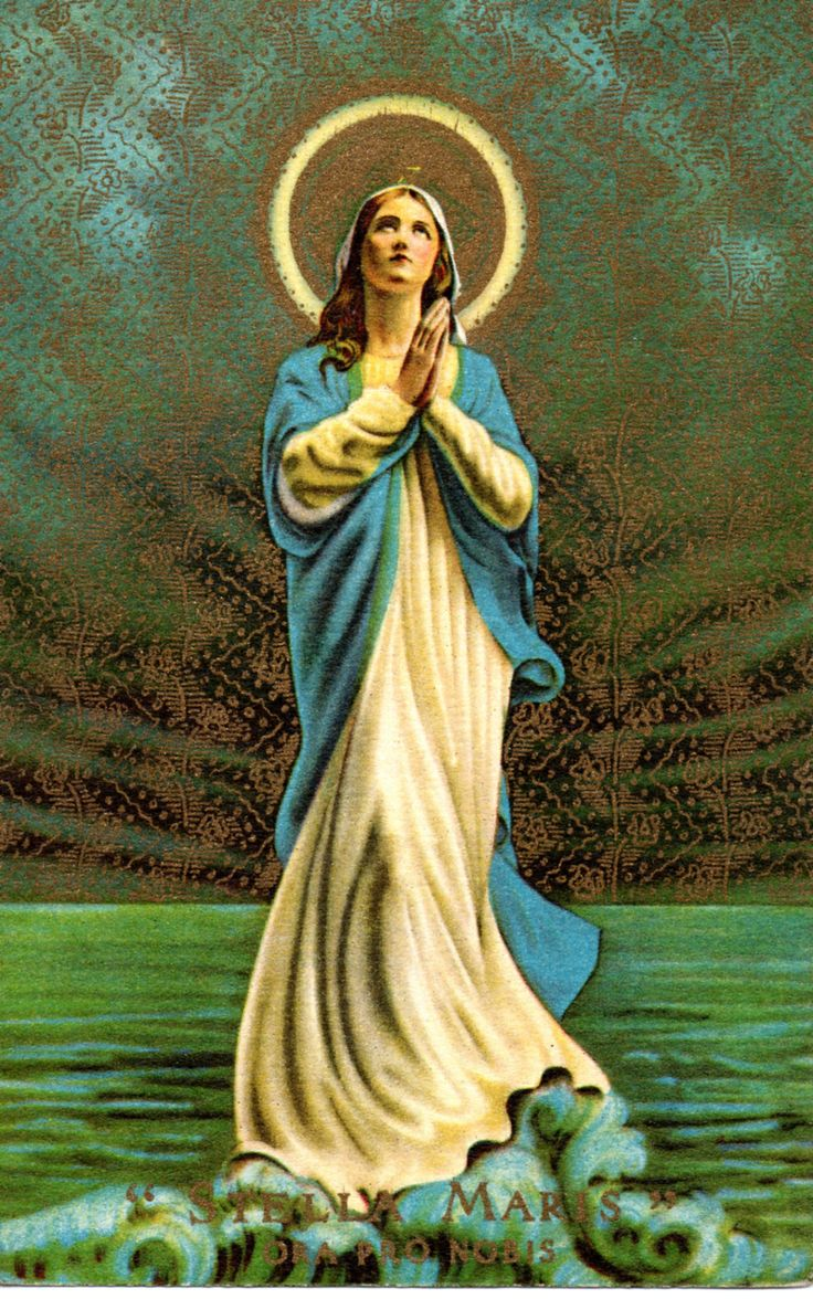 """When you find yourself tossed by the raging storms on this great sea of life, far from land, keep your eyes fixed upon this Star...when the winds of temptation or the rocks of tribulation threaten, look up to this Star, call upon Mary!"" - St. Bernard"