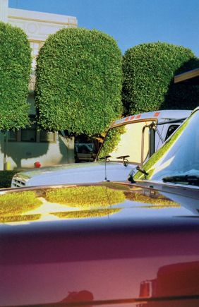 William Eggleston, grappige weerspiegeling van de bomen in de auto's