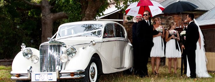 Classic Jags Gallery - Classic Jags Adelaide for Elegance and luxury wedding cars...  Wedding Party to be driven to the Reception...
