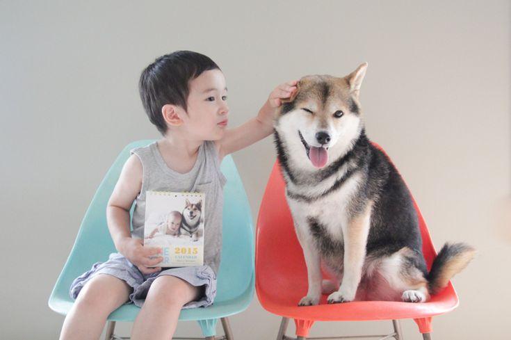 http://shibanomaru.blog43.fc2.com/